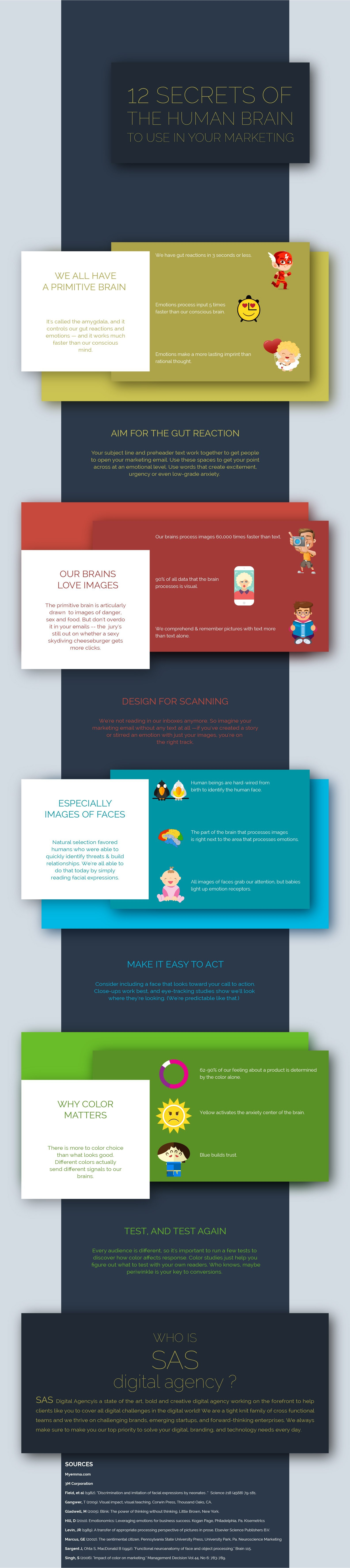 12 SECRETS OF THE HUMAN BRAIN TO USE IN YOUR MARKETING